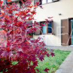 15-casa-con-giardino-primingresso-Duino-Aurisina-giardino
