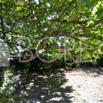 12_Duino_Aurisina_cassetta_giardino
