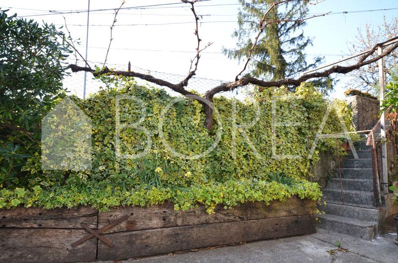 19_Duino-Aurisina_casale_carsico_in_pietra_con_vigna