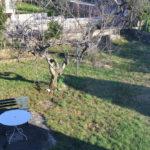 12_sistiana_duino aurisina_trieste_porzione_di_bifamiliare_giardino