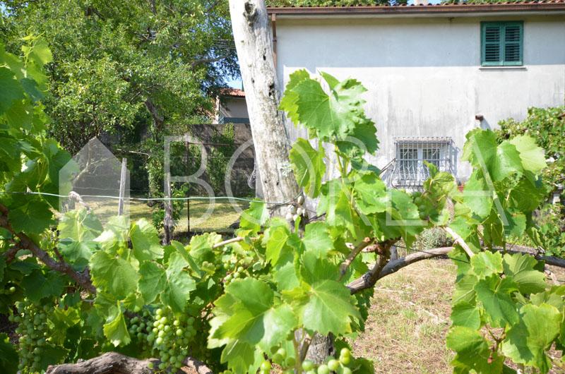 17_casa_con_giardino_duino_aurisina