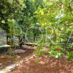 28_duino-aurisina-appartamento-con-giardino