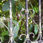 20_casa_carsica-in-pietra-con-corte-vista-mare