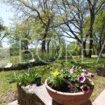 03_casa_vendita_giardino_comune_sgonico