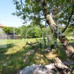 03_terreno-edificabile-San-Pelagio-Duino-Aurisina-Trieste