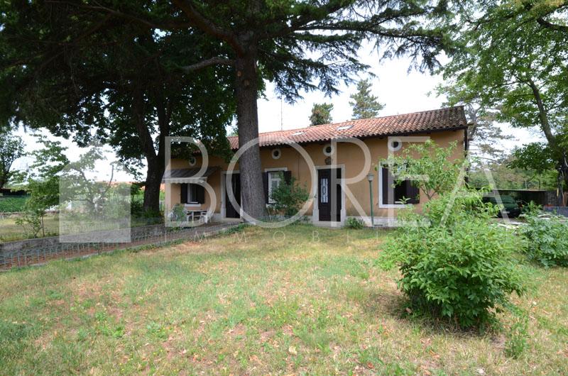 15_Duino_Aurisina_casa_con_giardino_giardino